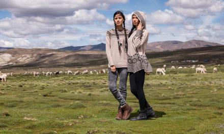 Bekleidung aus Alpakawolle für Hund und Herrchen