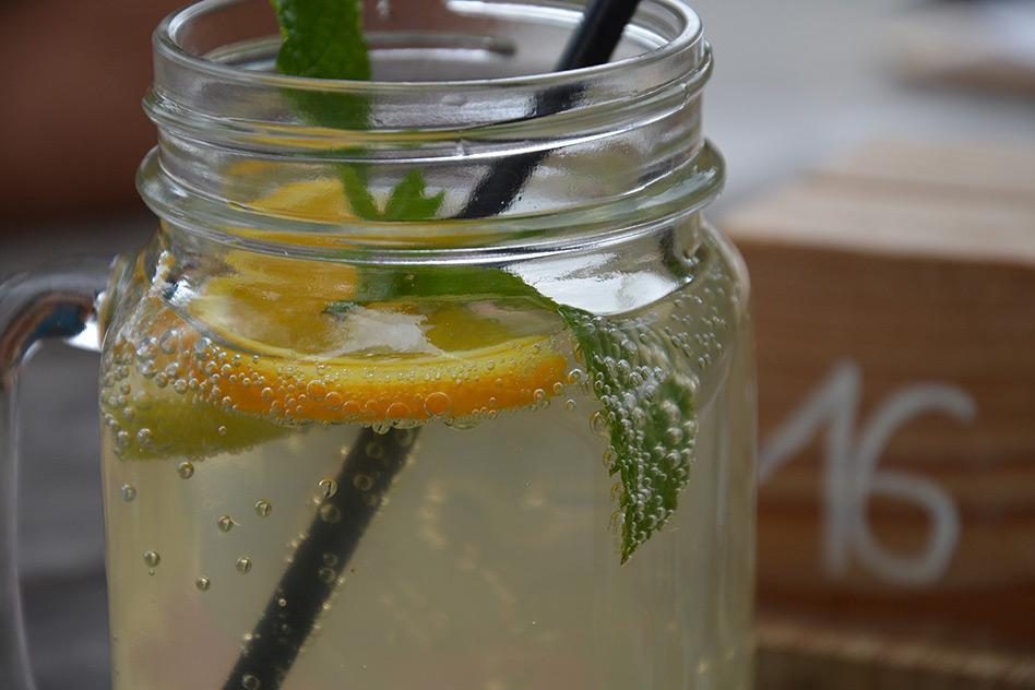 Zitronenmelisse Tee für den Magen – so wirkt die Heilpflanze