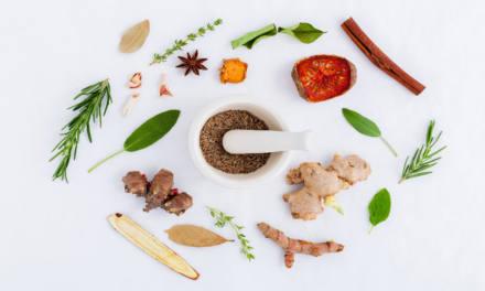 So wirksam sind die Medikamente aus der Apotheke der Natur