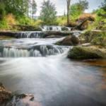 Die Harz Region – eine Urlaubsregion, die viel zu bieten hat